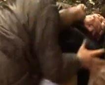 【野外レイプ動画】「おとなしくしろや!」必死で抵抗するも殴られ山奥で中出しされる女子校生・・・